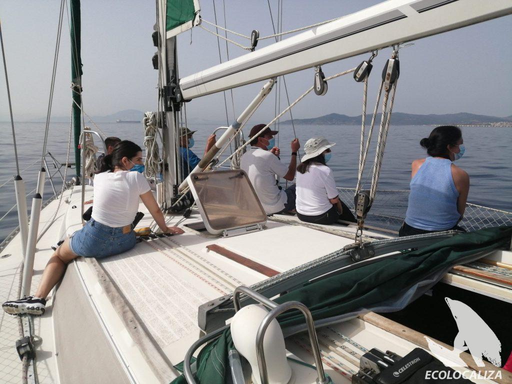 barco ecolocaliza